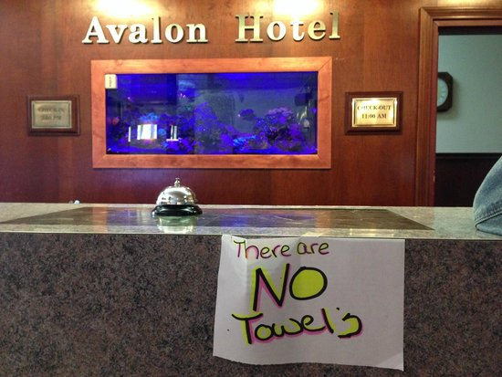 The Avalon Hotel and Conference Center : Don't count on getting towels.