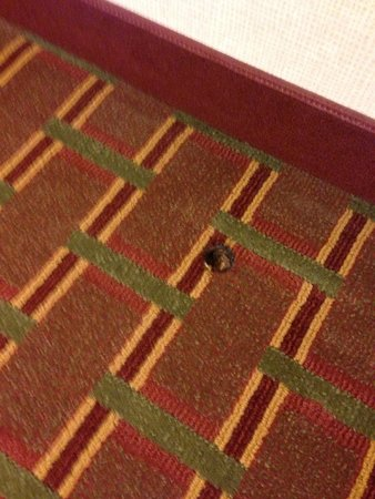The Avalon Hotel and Conference Center : That's a hole in the floor.