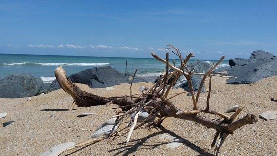 Camping le Sabia : Petite plage à environ 300 mètres du Camping