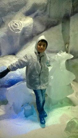 Snow World Mumbai: Ice Sculptures ??
