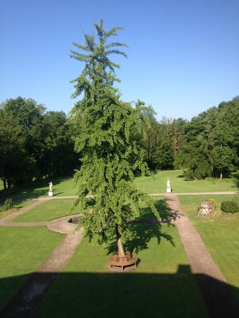 Schloss Auel: View of the grounds from the second floor