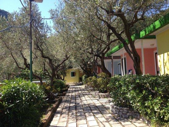 Villaggio Resort Nettuno : Villlaggio Nettuno