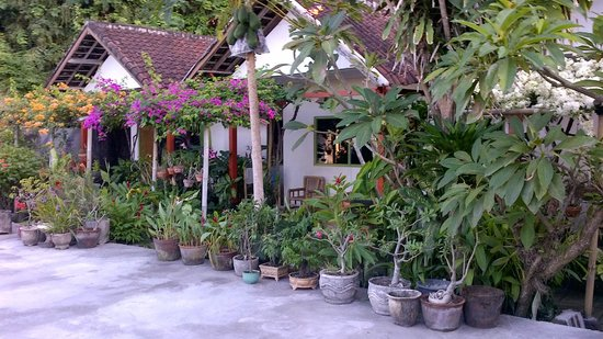 Ari Homestay: Upstairs rooms in a garden setting