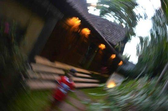 Ayung Resort Ubud: surreal pic at hotel - no filters