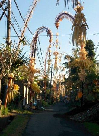 Ayung Resort Ubud: road to hotel