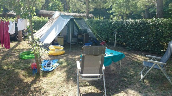 Campingvillage Le Capanne: Ruime plek