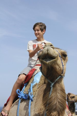 Tangier Tours - Day Tours: With kids, a camel ride is mandatory!
