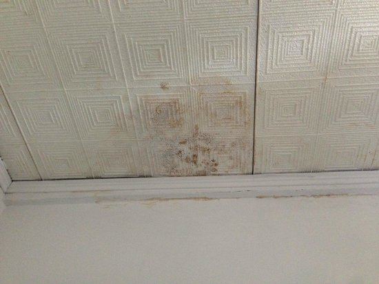 Altavilla: The ceiling in the room had mold in severel places.