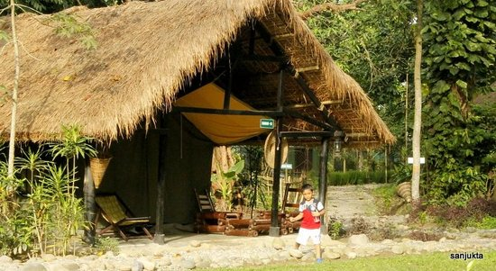 Nameri Eco Camp: the tents that you can hire