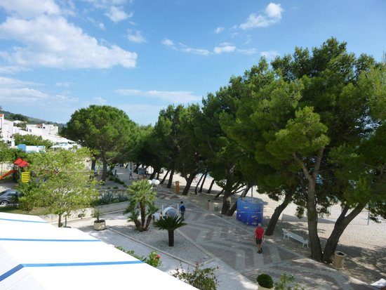 Bluesun Hotel Alga: Pine Trees line the promenade
