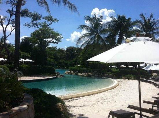 Hyatt Regency Hua Hin : Pool