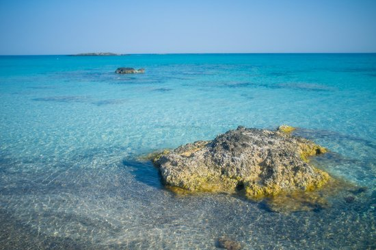 Plage d'Elafonissi : Blue, clear waters