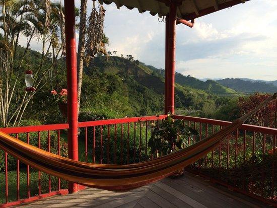 Hacienda Venecia Coffee Farm: der Blick vom Wohnzimmer aus (Schöne Sonnenuntergänge)
