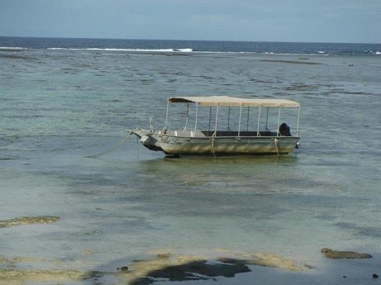 Fiji Hideaway Resort & Spa: glass bottom boat