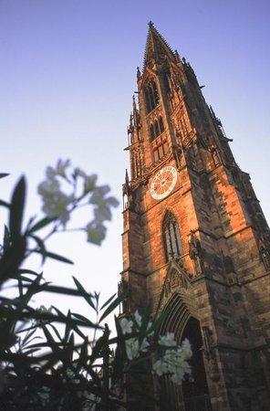 Freiburg Kultour Tours