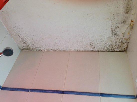 Kyriad Villefranche Sur Saone : Plafond de la salle de bain (Bathroom ceiling)