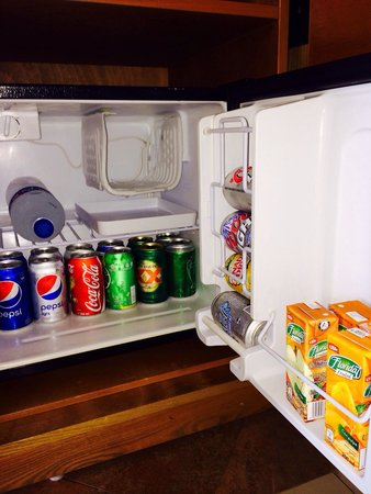 Beach Palace: The fridge. Drinks topped up regularly
