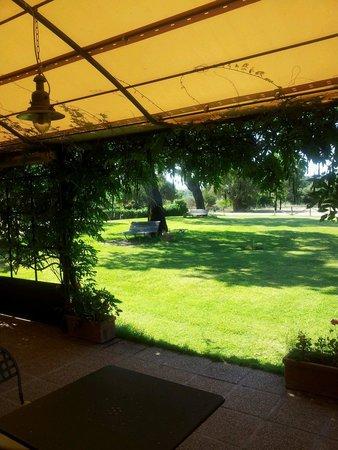 Agriturismo Li Scopi : Dalla veranda della colazione, from the breakfast conservatory