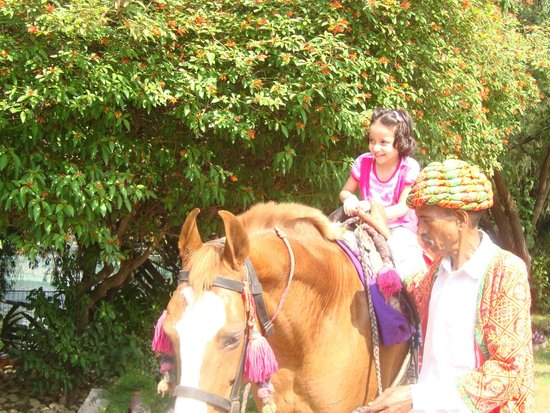 Best Western Resort Country Club: Horse Riding
