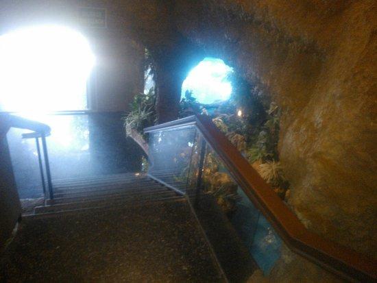 Magic Aqua Rock Gardens: Entrada