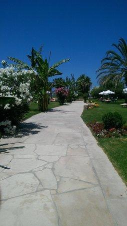 SENTIDO Cypria Bay: walk to paphos