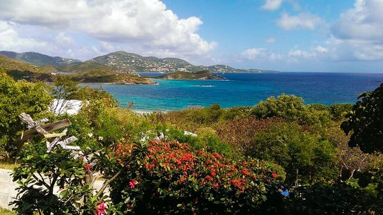 Virgin Islands Campground: Campground View