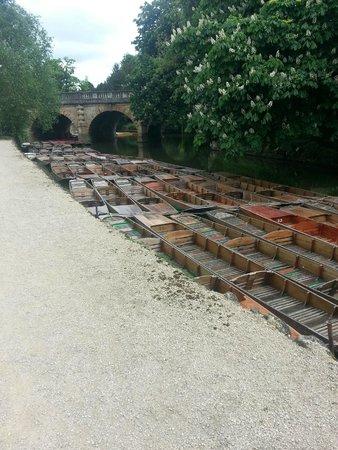 University of Oxford Botanic Garden: Boats in Oxford