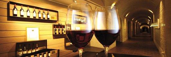 Bergkelder: Taste a selection of 5 Fleur du Cap wines in the mountain cellar