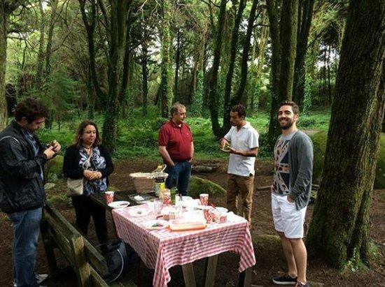 Yellow-Van Tours & Activities : Launch at Sintra woods
