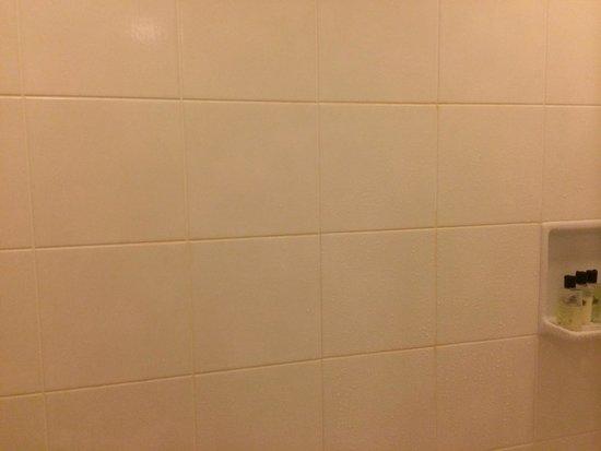 Ana Intercontinental Tokyo: Yellow bath tiles.