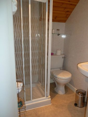 Ardconnel House B&B : The bathroom