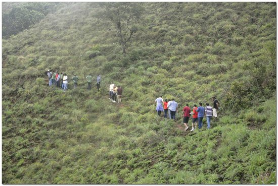 The Tamara Coorg : nature trail with group