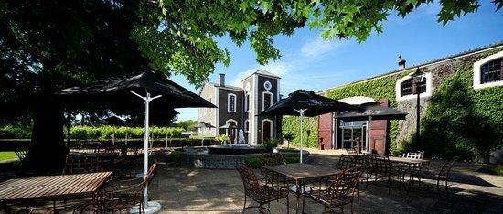 Van Ryn's Distillery : Enjoy the lovely garden outside the distillery for a tasting or a bite to eat