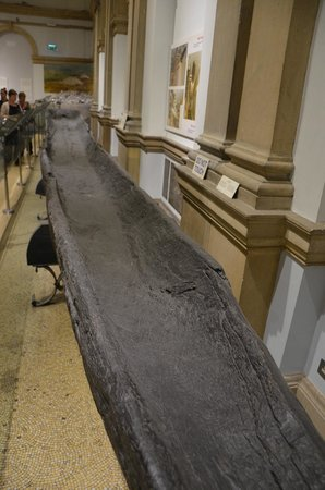 National Museum of Ireland - Archaeology: Boat