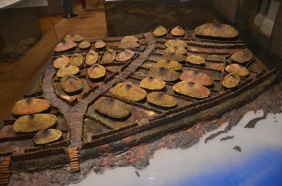 National Museum of Ireland - Archaeology : Viking Dublin