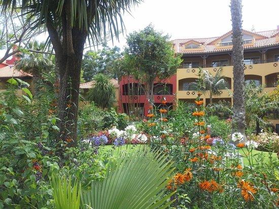 Pestana Village: Park