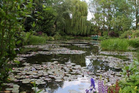 Maison et jardins de Claude Monet : tranquil waters to second bridge