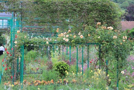 Maison et jardins de Claude Monet : Near greenhouse
