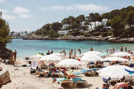 Sol Cala d'Or Apartamentos: Бухта и пляж