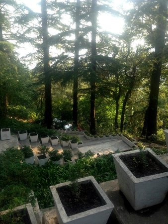The Claridges Nabha Residence, Mussoorie: steps going down the hill to the play area