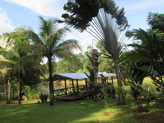 Hotel Pedacito de Cielo Eco Lodge: le bosquet lagune