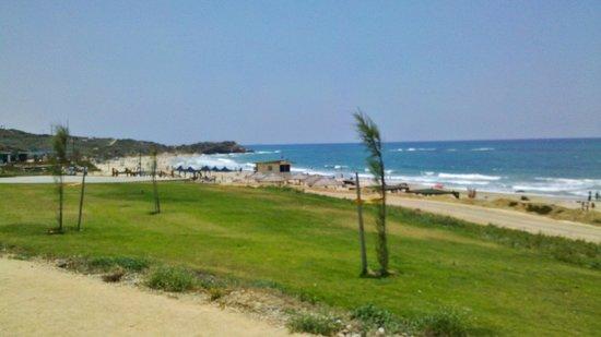 Palmachim Beach: Красота