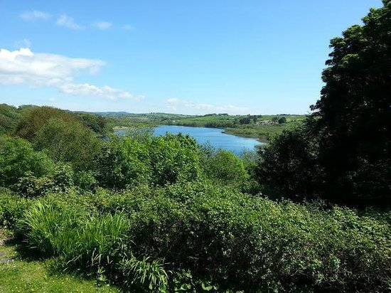 Liss Ard Estate: Lake on your doorstep