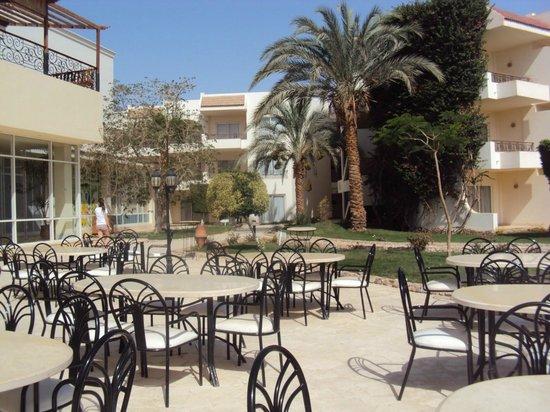 Labranda Club Makadi: Terrasse proche reception