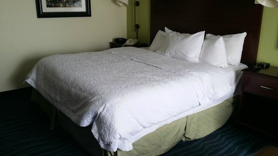 Hampton Inn Perimeter Center: Comfy bed! In one of the many ways it was made..