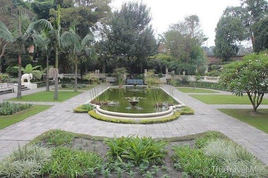 夢幻花園(Garden of Dreams)