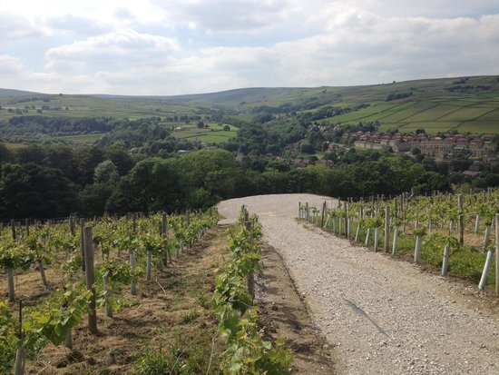 Holmfirth Vineyard: Fantastic!