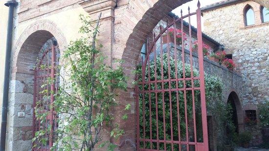 Agriturismo  Podere PratoVecchio: Il meraviglioso ingresso di PratoVecchio