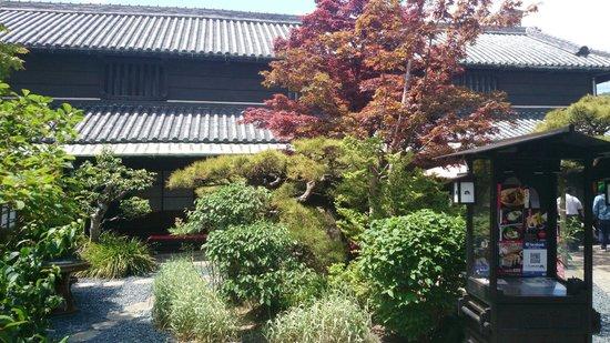 Udon Honjin Yamadaya Sanuki Honten : 中庭