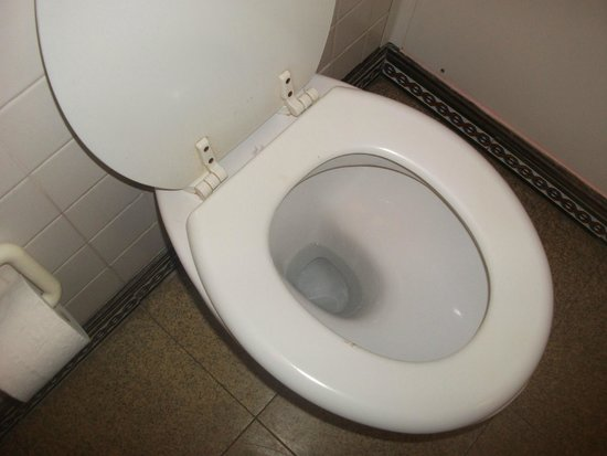 Europa Gatwick Hotel: Dirty Toilet with poo free of charge on seat
